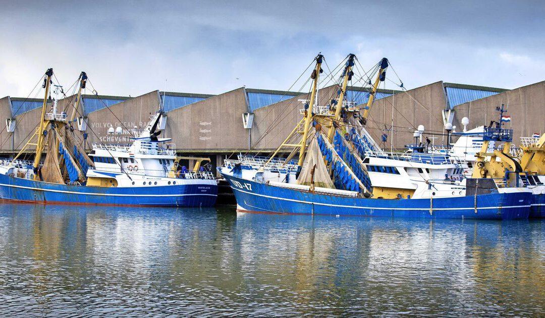 Nederlandse visserij moet Brexit-vergoeding delen met Grieken: 5 vragen