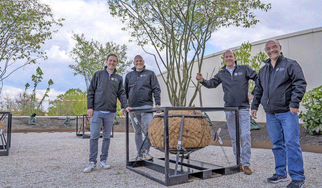 Start-up plaatst bomen op balkon of dak