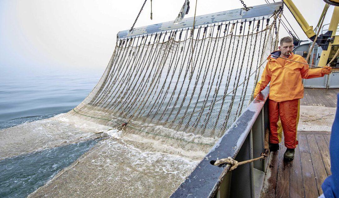 Schipbreuk bij lobbyclub kottervissers om twist over Noordzeeakkoord