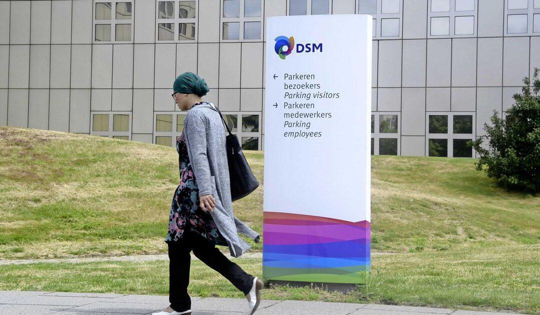 DSM ziet af van subsidie en blijft in Limburg