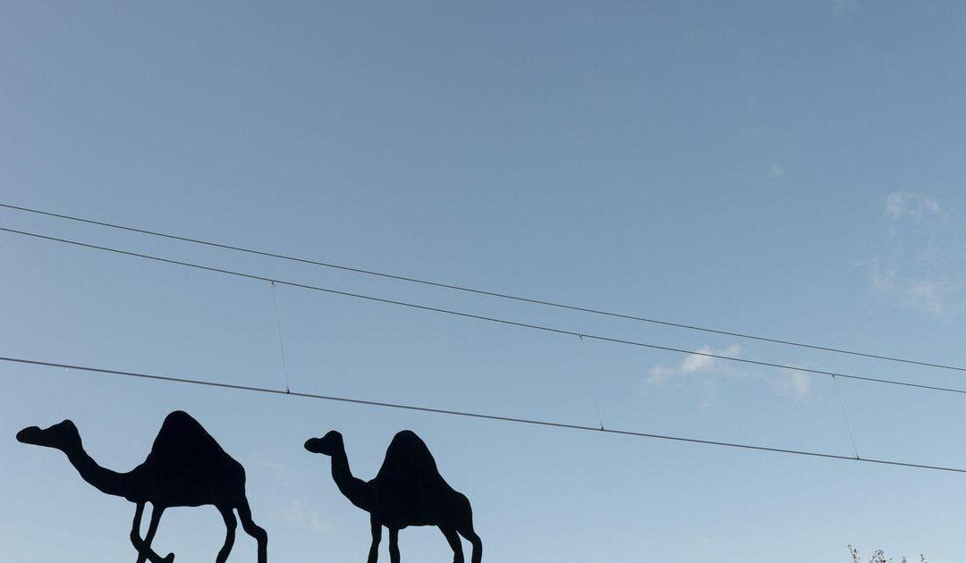 Column: aandelenbeurs van Kabul voorlopig nog fata morgana