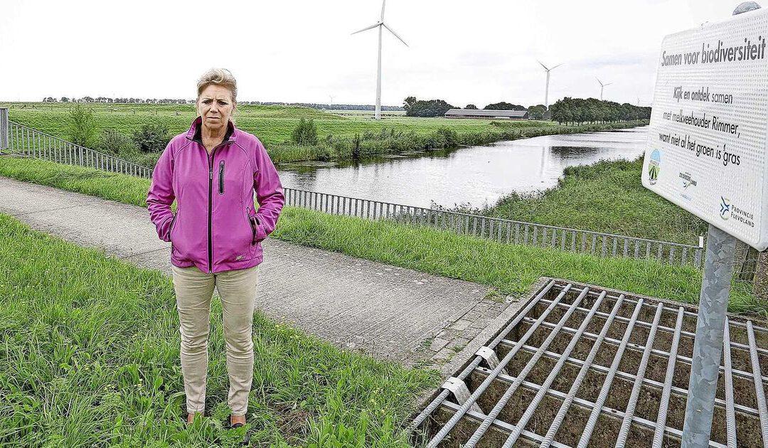 'Enorm datacenter in Zeewolde is pure waanzin'
